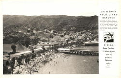 View of Town and Beach, Avalon