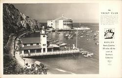 Avalon - Catalina Yacht Club