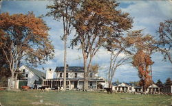 Sunset Farm Guest House and Cabins Postcard