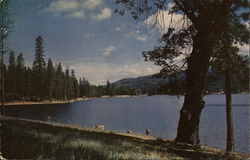 Bass Lake, California
