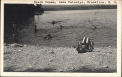 Beach Scene, Lake Potanipo