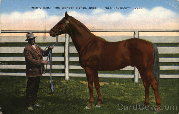 Man-O-War, The Wonder Horse, Bred in Old Kentucky