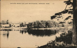 Bathing Beach on Lake Whittemore