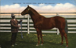 """Man-O-War,"" The Wonder Horse, Bred in ""Old Kentucky"""