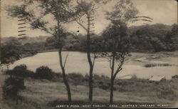Jerry's Pond, Martha's Vineyard Island