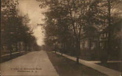 A View of Woodland Road