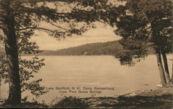 Camp Namaschaug from Pine Grove Springs