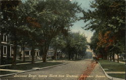 Louisiana Street, Looking North From Winthrop
