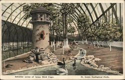 Interior Scene of Large Bird Cage, St. Louis Zoological Park