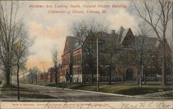 Mathews Ave. Looking South, Natural History Building, University of Illinois
