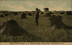 Wheat Field on Hon. A. N. Abbot's Farm, Whiteside Co.