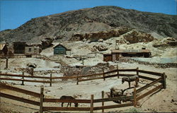Corral, Pack Burros, Calico Ghost Town