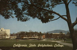 California State Polytechnic College