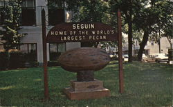 Home of the World's Largest Pecan