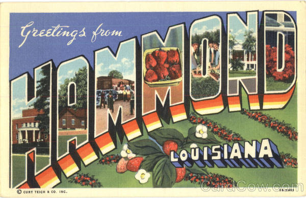 Greetings From Hammond Louisiana Large Letter