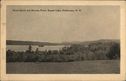 Perch Island and Mooney Point, Squam Lake