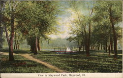 View in Maywood Park Postcard