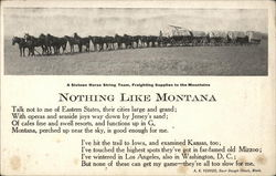 A Sixteen Horse String Team, Freighting Supplies To The Mountains