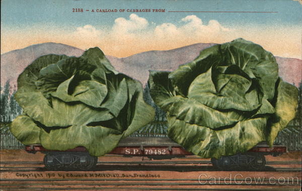 A Carload of Cabbage From ________ Exaggeration