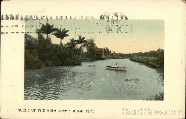 Scene Up The Miami River Florida