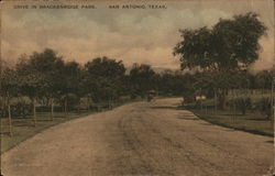 Drive in Brackenridge Park