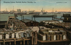 Shipping Cotton, Norfolk Harbor