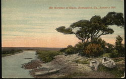 Marshes of Glynn, Lanier's Oak