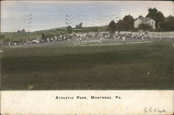 Athletic Park Postcard