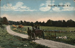 Rural Road Scene Postcard