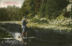 Casting for Trout in a Montana Stream