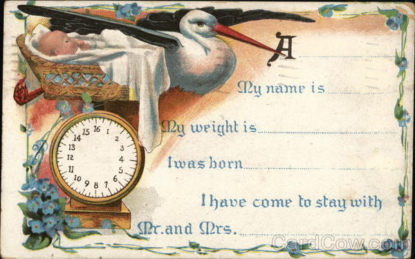 Birth Announcement Storks