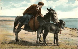 Man with two donkeys