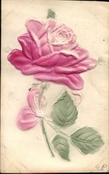 Pink Rose in Relief