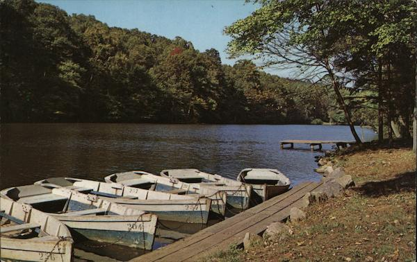 Boat Dock at Surprise Lake Union County New Jersey