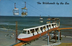 The Wildwoods by the Sea