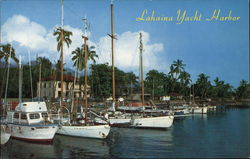 Hawaii harbor
