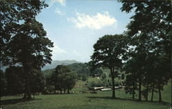 Cataloochee Ranch and Meadows Postcard