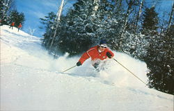 Okemo Mountain - Deep Powder Postcard