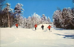 Okemo Mountain - Skiers Postcard
