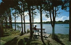 Scargo Lake