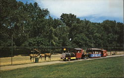 Dakota Zoo - Zoo Train