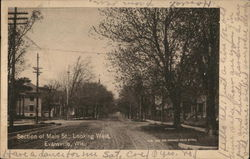 Section of Main Street, Looking West Postcard
