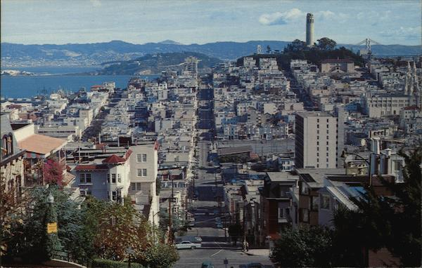 View of City From Hilltop San Francisco California