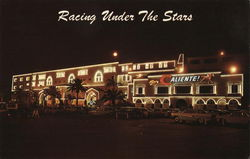 Racing Under The Stars