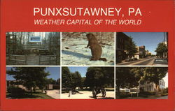 Weather Capital of the World - Home of the Groundhog Postcard
