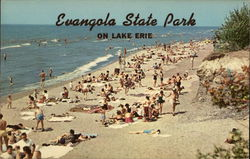Evangola State Park on Lake Erie Postcard