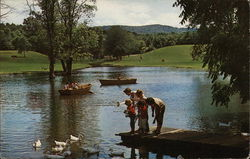 Children Feeding the Ducks on One of the Lakes at Fernwood