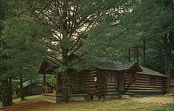 Cabins at MacBeth's, Cook Forest State Park