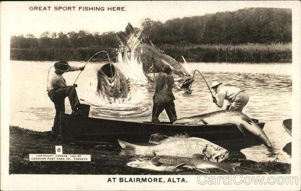 Great Sport Fishing Here Blairmore Canada Ontario