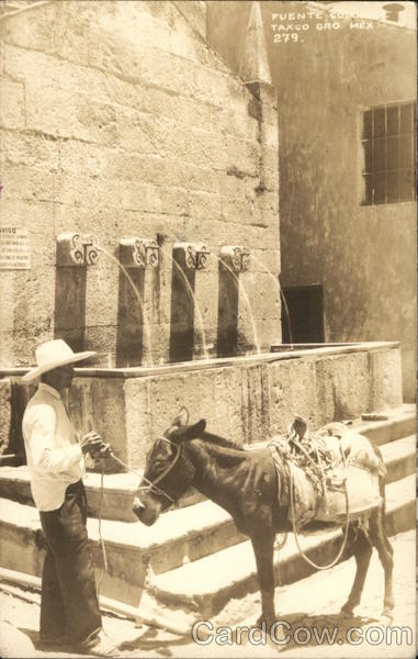 Burrow and Man at Watering Fountain Taxco Mexico